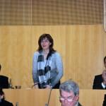 2.12.2015 - konference KRS Č.B.-001